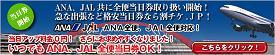 toujitsu_s.jpg